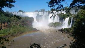 彩虹和植被在伊瓜苏瀑布国立公园 免版税库存照片