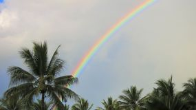 彩虹在哈密尔顿岛 库存照片