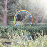 彩虹在森林里 免版税库存图片