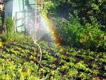 彩虹在晴朗的小室,在庭院里 库存照片