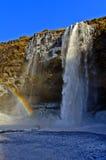 彩虹在Seljalandsfoss瀑布,冰岛薄雾捉住了  免版税库存图片