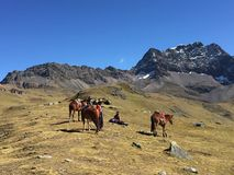彩虹山,库斯科省,秘鲁,第11, 2016年:一个小组 免版税库存照片