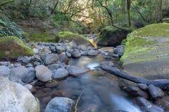 彩虹峡谷,大教堂高峰自然保护,德肯斯伯格山脉,夸祖鲁纳塔尔,南非 免版税库存图片