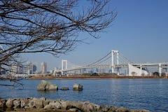 彩虹桥梁在东京,日本 免版税库存照片