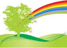 彩虹结构树 免版税图库摄影