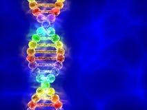 彩虹脱氧核糖核酸(脱氧核糖核酸)在蓝色背景 免版税图库摄影
