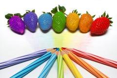 彩虹草莓 库存图片
