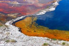 彩虹水池  库存照片