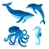 水彩被设置的海洋动物 皇族释放例证
