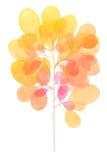 水彩装饰橙色分支 免版税库存照片