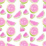 水彩西瓜样式 库存图片