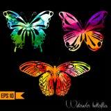 水彩设置与蝴蝶 向量 免版税图库摄影