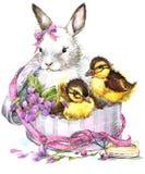 水彩逗人喜爱的兔宝宝和一点鸟、礼物和花背景 免版税库存照片