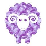 水彩逗人喜爱的绵羊 库存图片