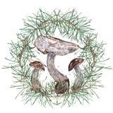 水彩采蘑菇例证 皇族释放例证