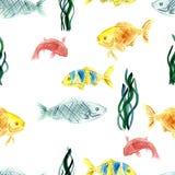 水彩钓鱼无缝的光栅样式 向量例证