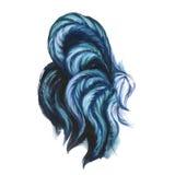 水彩雄鸡例证 蓝色雄鸡尾巴 免版税库存照片