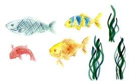 水彩鱼的汇集和海在白色背景除草隔绝 向量例证