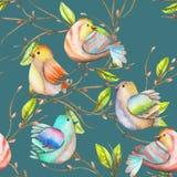 水彩鸟的无缝的样式在分支的,手拉在深蓝背景 免版税库存照片