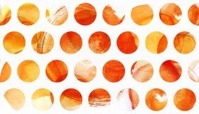 水彩绘了与黄色,橙色和红色圈子的纹理 库存图片