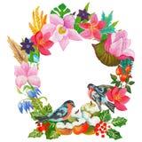 水彩绘了花和叶子的优秀组合,隔绝在白色背景 库存图片