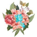 水彩绘了花和叶子的优秀组合,隔绝在白色背景 库存照片