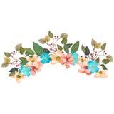 水彩绘了花和叶子的优秀组合,隔绝在白色背景 免版税库存照片