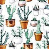 水彩仙人掌沙漠热带庭院无缝的样式 水彩仙人掌样式 库存照片