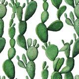 水彩仙人掌热带庭院无缝的样式 免版税图库摄影