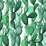 水彩仙人掌热带庭院无缝的样式 库存图片