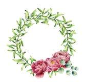 水彩绿叶缠绕与牡丹花和玉树分支 在白色隔绝的手画花卉边界 免版税图库摄影