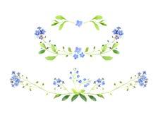 水彩 套花卉装饰 勿忘草 免版税库存照片