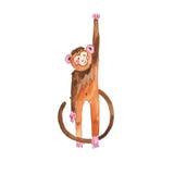 水彩猴子 皇族释放例证