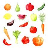 水彩水果和蔬菜象,传染媒介 免版税库存图片