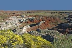 彩绘沙漠国家公园在8月-亚利桑那 免版税库存照片