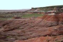 彩绘沙漠国家公园在8月- Arizonad 库存图片