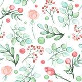 水彩绿色叶子、英国兰开斯特家族族徽和莓果无缝的样式 库存照片