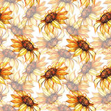 水彩黄色向日葵花无缝的样式背景 图库摄影