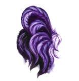 水彩紫色雄鸡例证 紫罗兰色颜色雄鸡尾巴 免版税库存照片