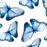 水彩蝴蝶,无缝的花卉葡萄酒 免版税库存图片