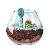 水彩 霓虹颜色 多汁植物的玻璃容器 图库摄影