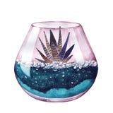 水彩 霓虹颜色 多汁植物的玻璃容器 库存图片