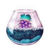 水彩 霓虹颜色 多汁植物的玻璃容器 免版税库存图片