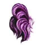 水彩purpure雄鸡例证 霓虹颜色雄鸡尾巴 库存图片