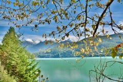 彭伯顿谷在吹口哨附近的河和Duffy湖路,加拿大作为秋天BC到达,并且风景改变肤色 库存图片