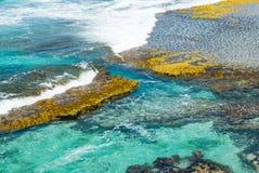 彭宁顿海湾,袋鼠海岛 库存图片