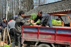 彭州,中国:农夫在小屋市场上 库存照片