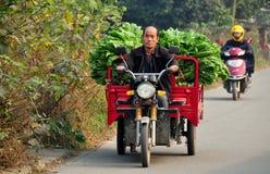 彭州,中国:驾驶沿乡下公路的农夫摩托车推车 库存图片