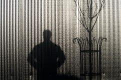 阴影人和树 库存照片
