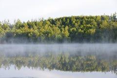 阴影和雾 免版税库存图片